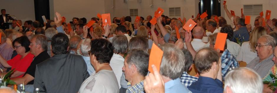 Abstimmung bei der Vertreterversammlung 2017